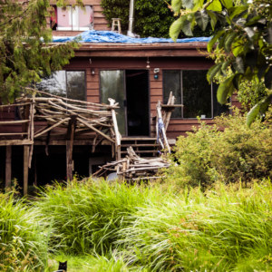 The swamp house in Gibsons