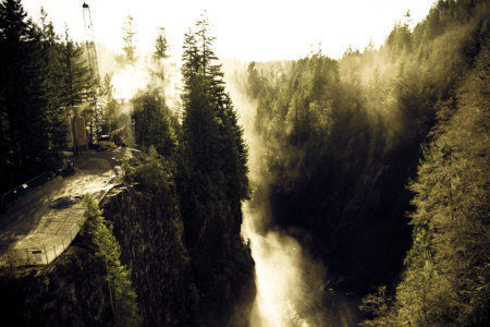 Misty Capilano Canyon