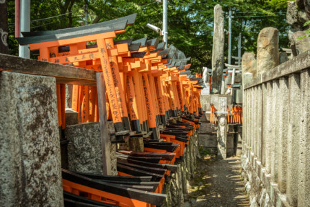 Hundreds of tiny torii at Fushimi Inari Taisha