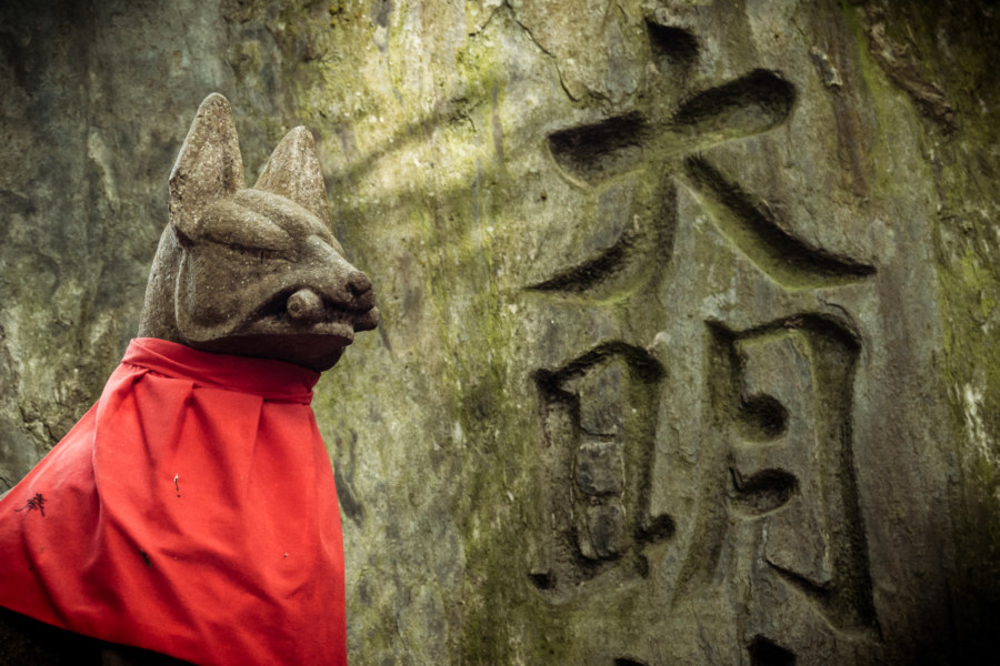 Alien fox at Fushimi Inari Taisha