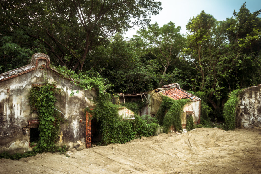 Overgrown traditional homes on Liuqiu island