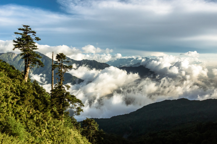 High in the Central Mountain Range of Taiwan