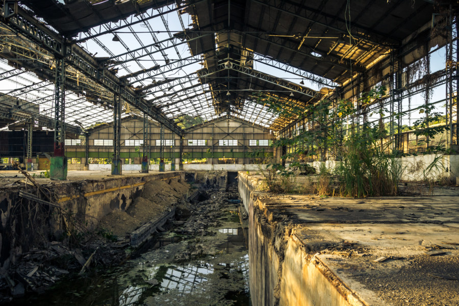 Nature reclaims the automotive factory
