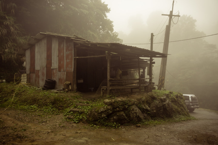 An old shack next to a mountainside tea plantation in Nantou