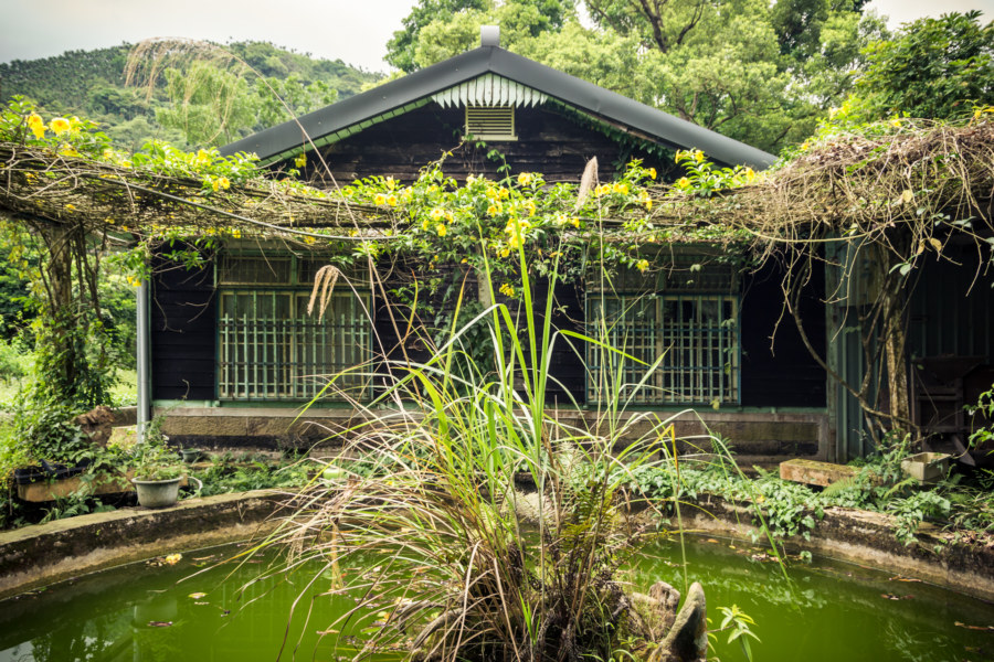 The fetid pool at Spring grass gardens 春草園