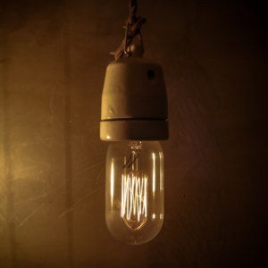 Pica Pica lightbulb