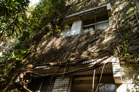 An overgrown building on Keelung Road